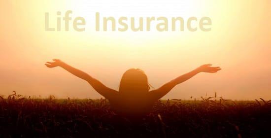 Life Insurance Premium Cost