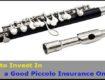 Piccolo Insurance Online