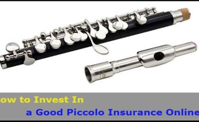 Piccolo Insurance Online