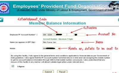 EPFO Account Status